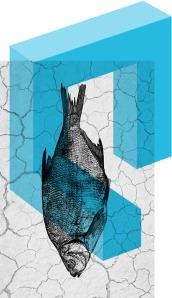 quand-la-mer periscope 2013-2014